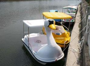 河南脚踏船